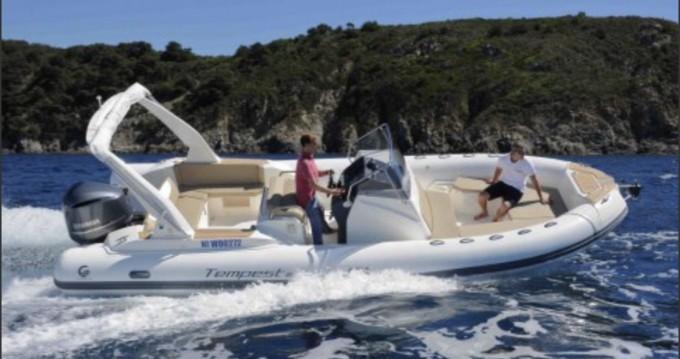 Boat rental Capelli Tempest 800 in Saint-Raphaël on Samboat