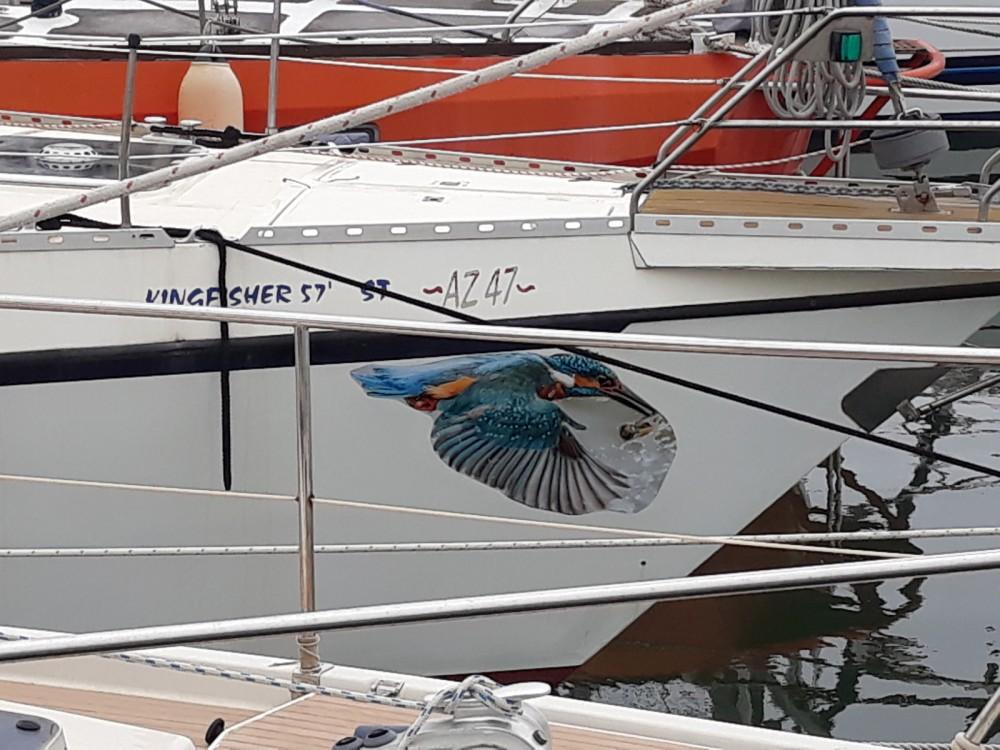 Boat rental AZZARO JOLLY MOTOR in Le Grau-du-Roi on Samboat