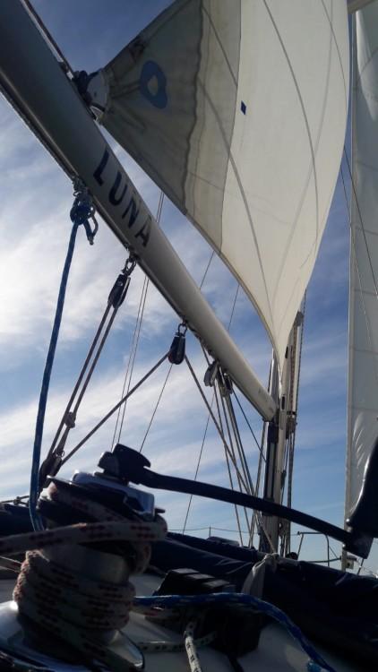 Boat rental Jeanneau Sun Odyssey 37.1 in Rota on Samboat