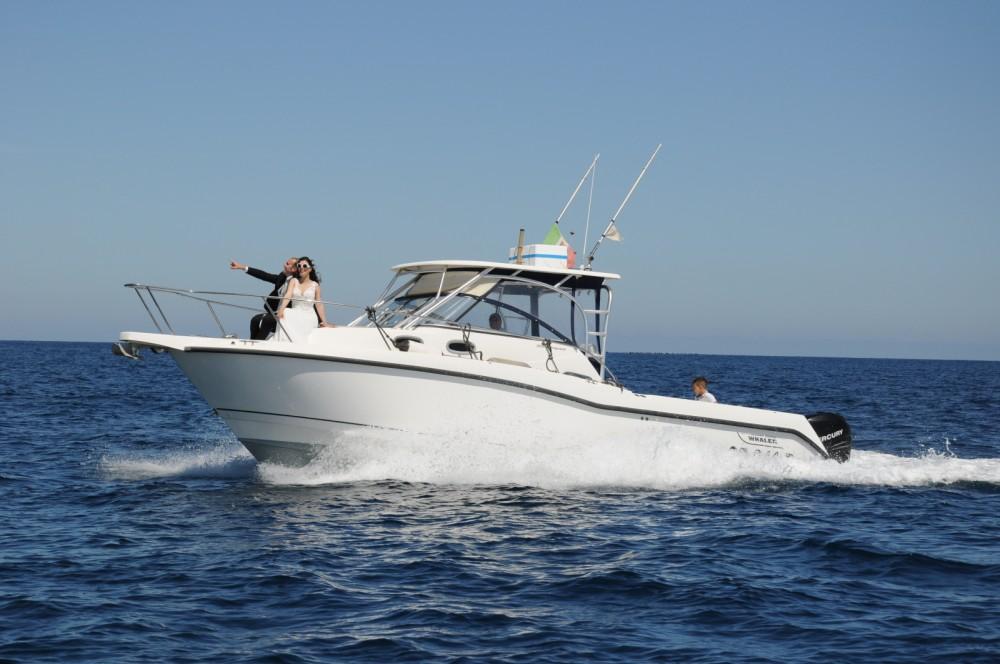 Rental Motor boat in Marzamemi - Boston Whaler Boston Whaler 305 Conquest