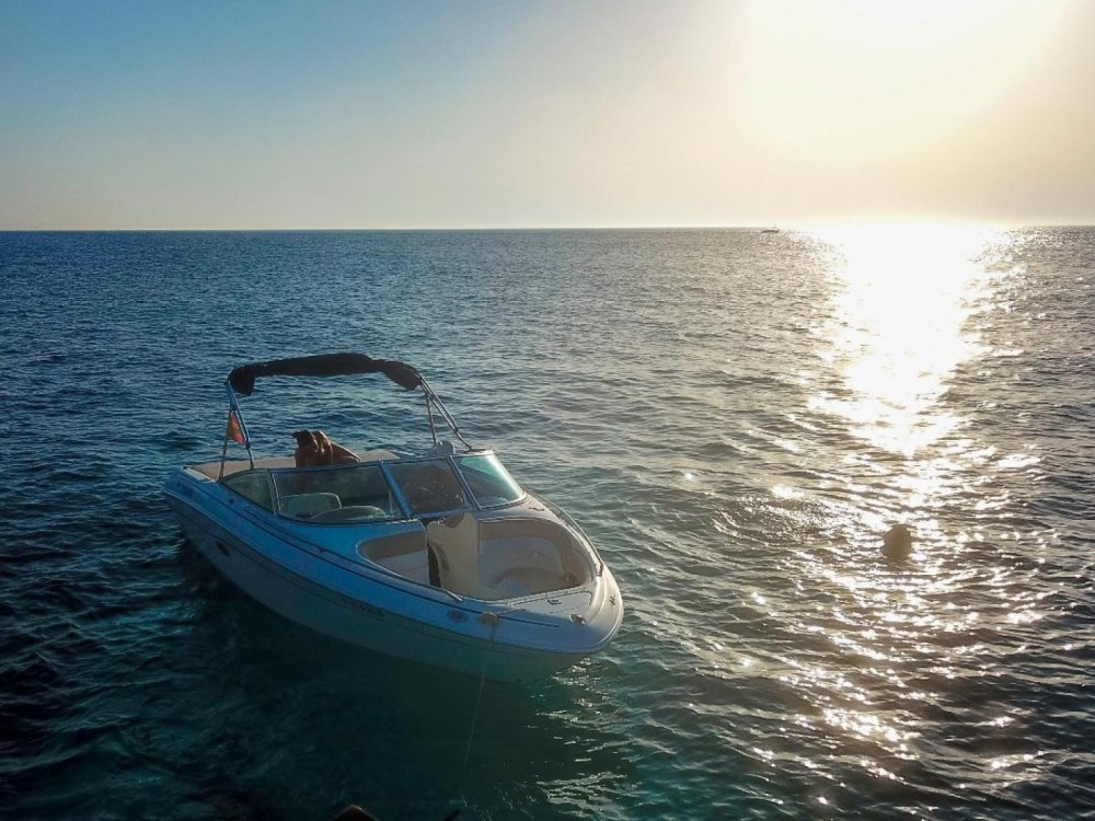 Hire Motor boat with or without skipper Sea Ray La Savina
