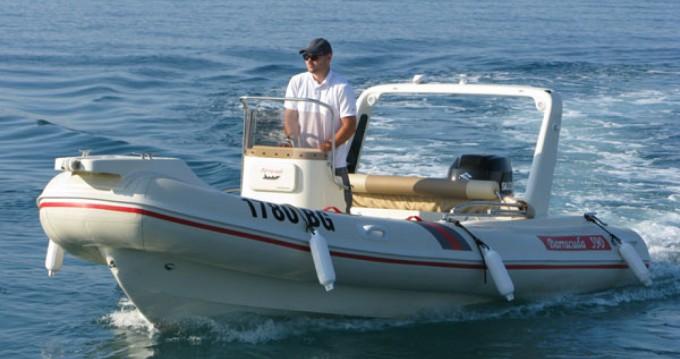 Rental RIB Barracuda with a permit