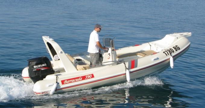 Hire RIB with or without skipper Barracuda Biograd na Moru