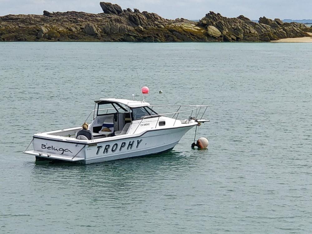 Rental Motorboat in Arradon - Bayliner Trophy 2352