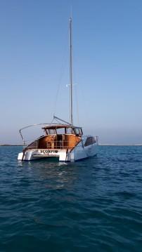 Hire Catamaran with or without skipper BOBCAT La Savina