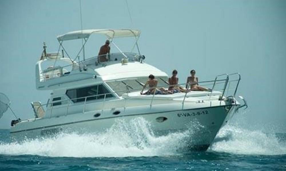 Boat rental Birchwood TS440 in Alicante on Samboat