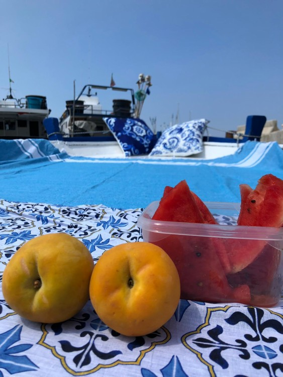 Hire Motorboat with or without skipper Cantiere Navale Monopoli Monopoli