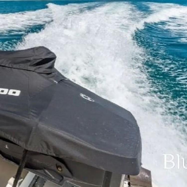 Rental yacht Vila Nova de Gaia - Sea Ray Sea Ray 460 Sundancer on SamBoat