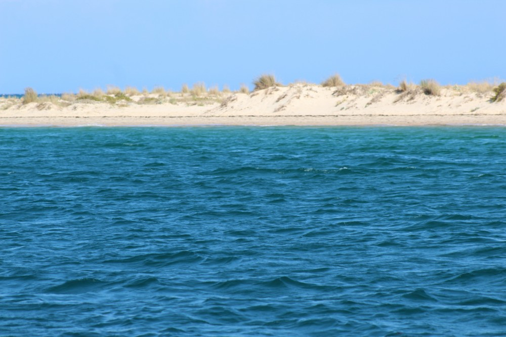 Motorboat for rent Faro at the best price