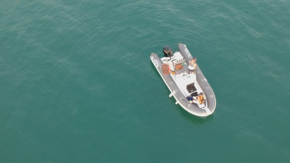 RIB for rent Le Havre at the best price