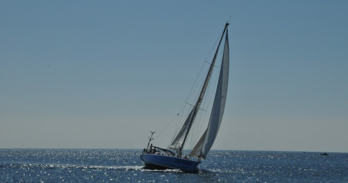 Boat rental Albufeira cheap JV 50