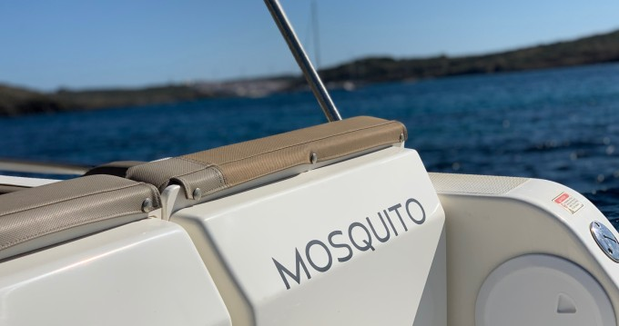 Quicksilver Activ 755 Sundeck between personal and professional Mahon Port