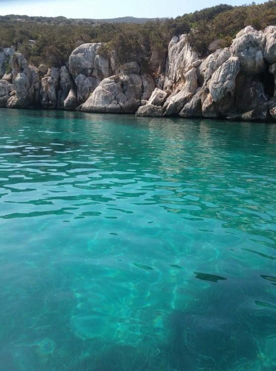 Rental Motorboat in Alghero - Saver 550 Open