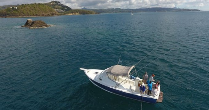 Hire Motorboat with or without skipper Bertram Port Castries