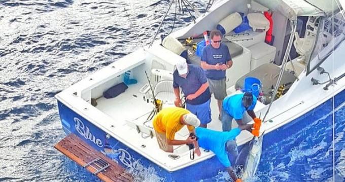 Bertram Bahia Mar between personal and professional Port Castries