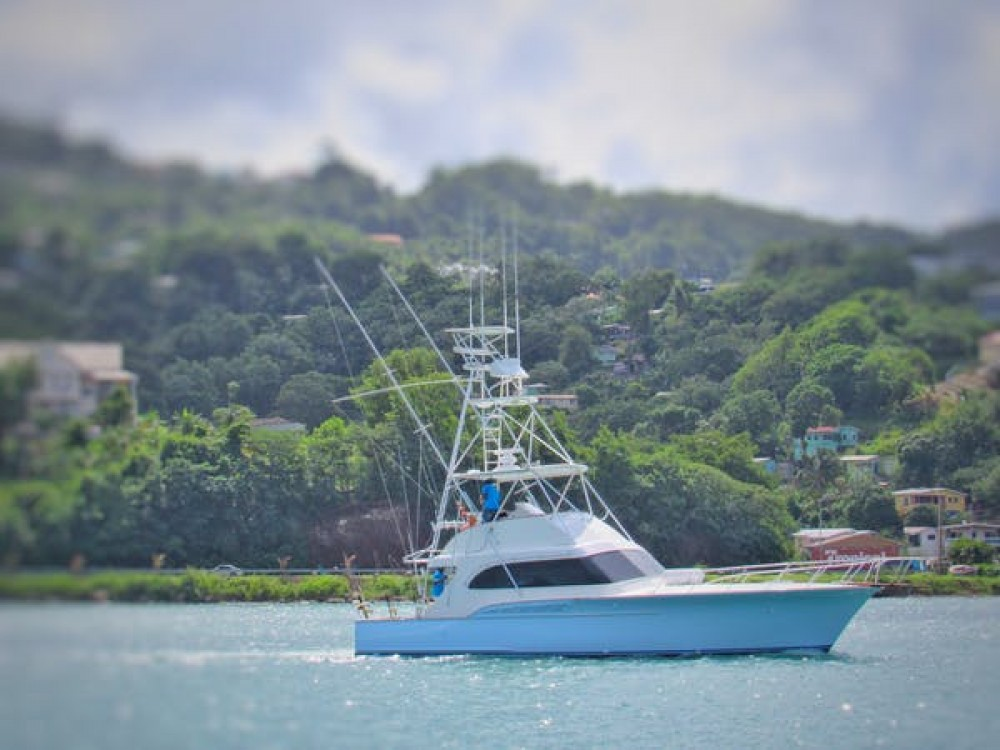 Buddy Davis Buddy Davis 47ft between personal and professional Castries
