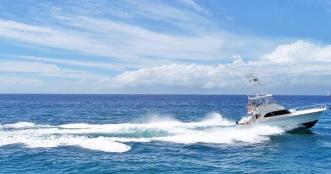 Rental Motorboat in Port Castries - Buddy Davis Buddy Davis 47ft