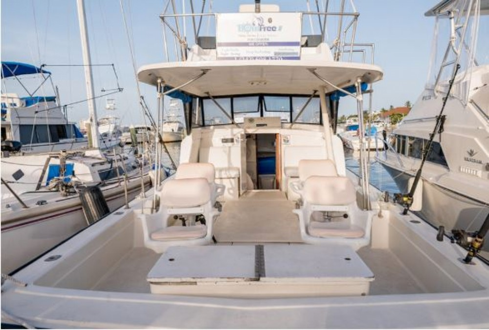 Hire Motorboat with or without skipper Allmand Sport Fisher Nassau