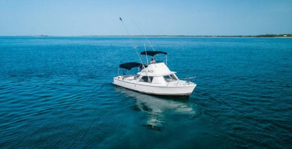 Hire Motorboat with or without skipper Bertram Nassau