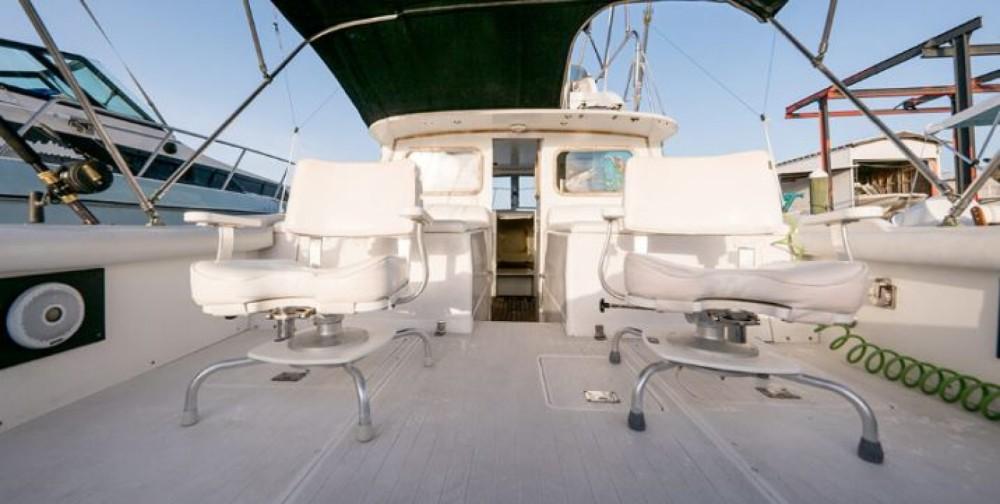 Rental Motorboat in Nassau - Bertram 31 foot