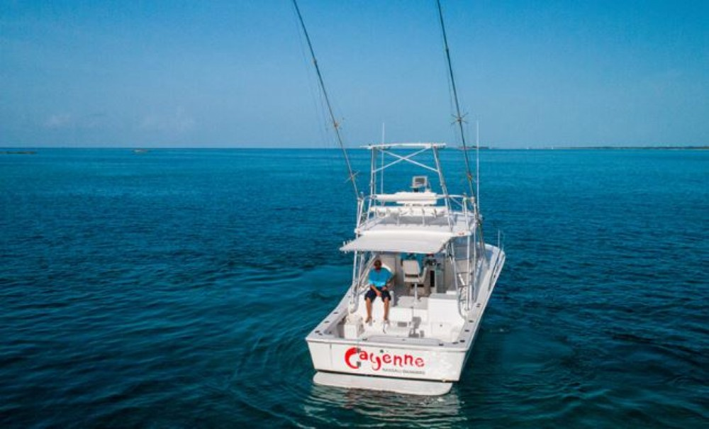 Rental Motorboat in Nassau - Luhrs 320 Tournament express