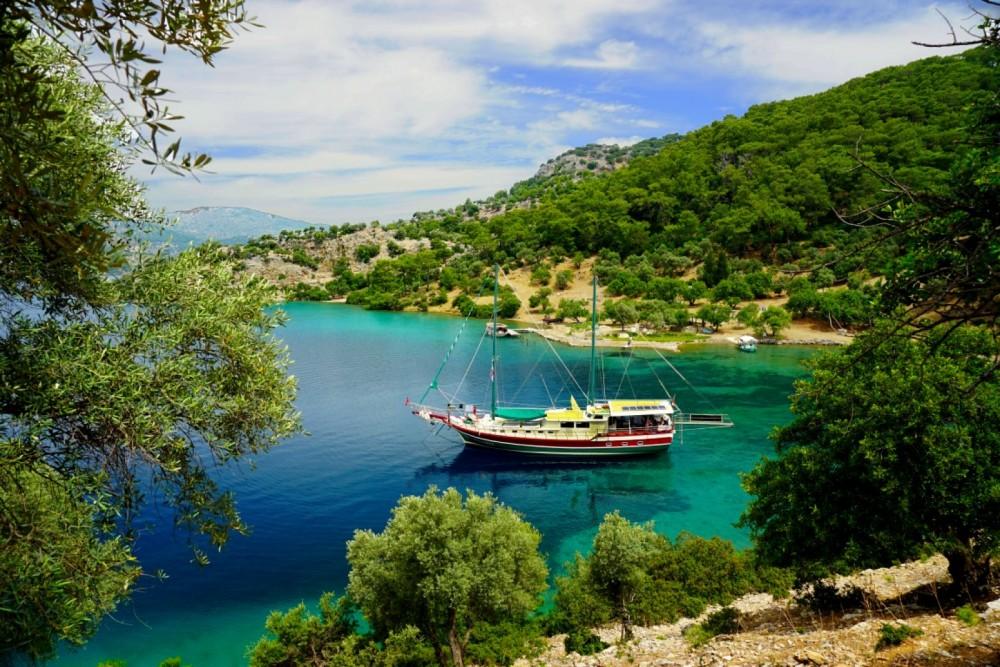 Boat rental Wooden gulet Standard Gulets in Muğla on Samboat