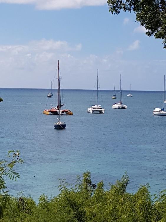 Boat rental Sainte-Anne cheap TRIMARAN 49