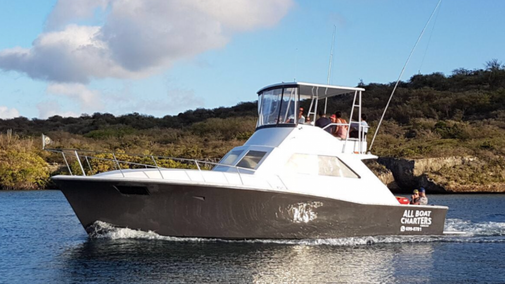 Hire Motor boat with or without skipper Pacemaker  Willemstad