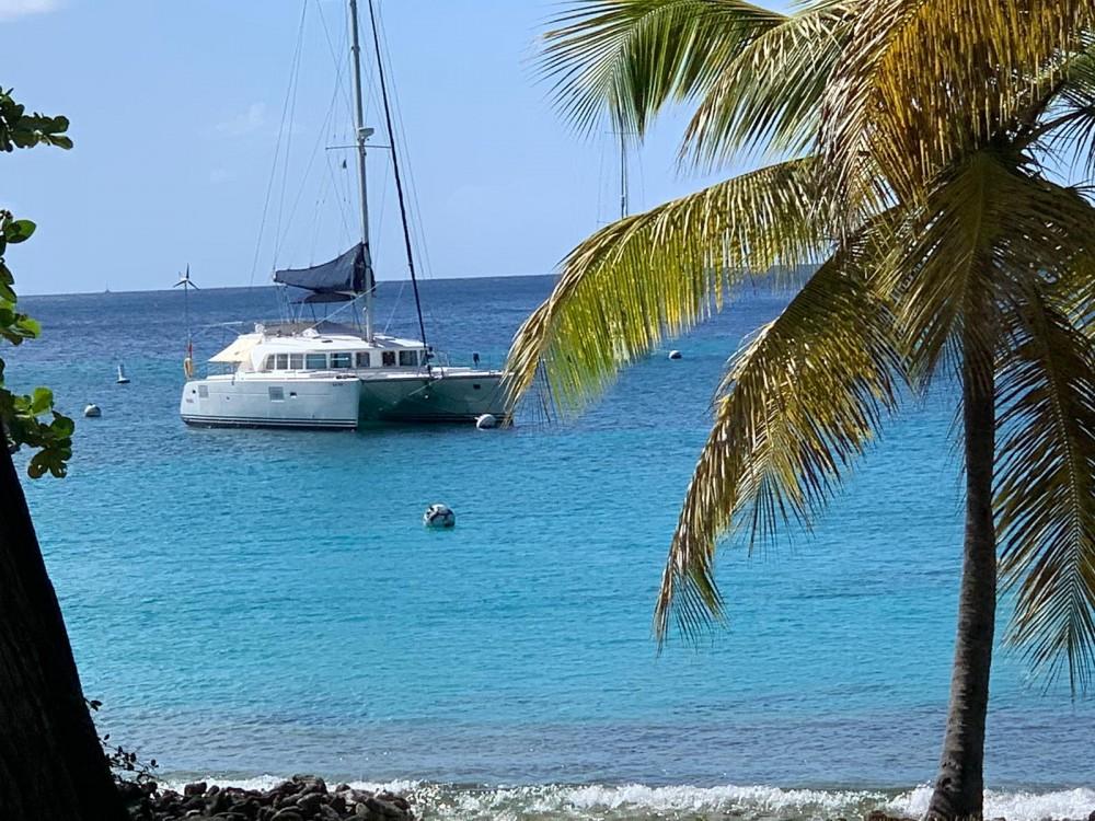Rental yacht Le Marin - Lagoon Lagoon 440 on SamBoat