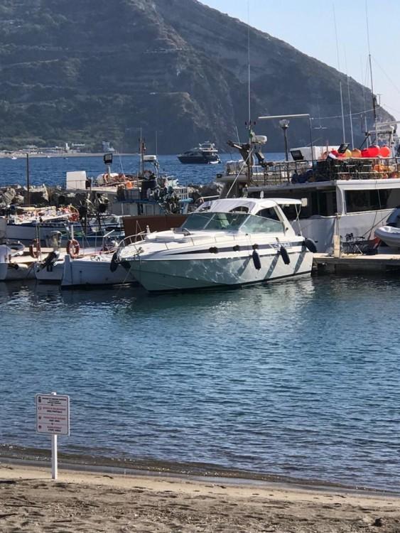 Boat rental Squalo 35  in Naples on Samboat