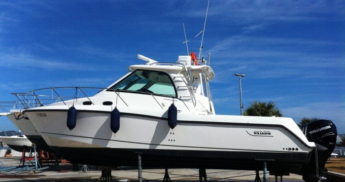 Motorboat for rent Torre Pali at the best price