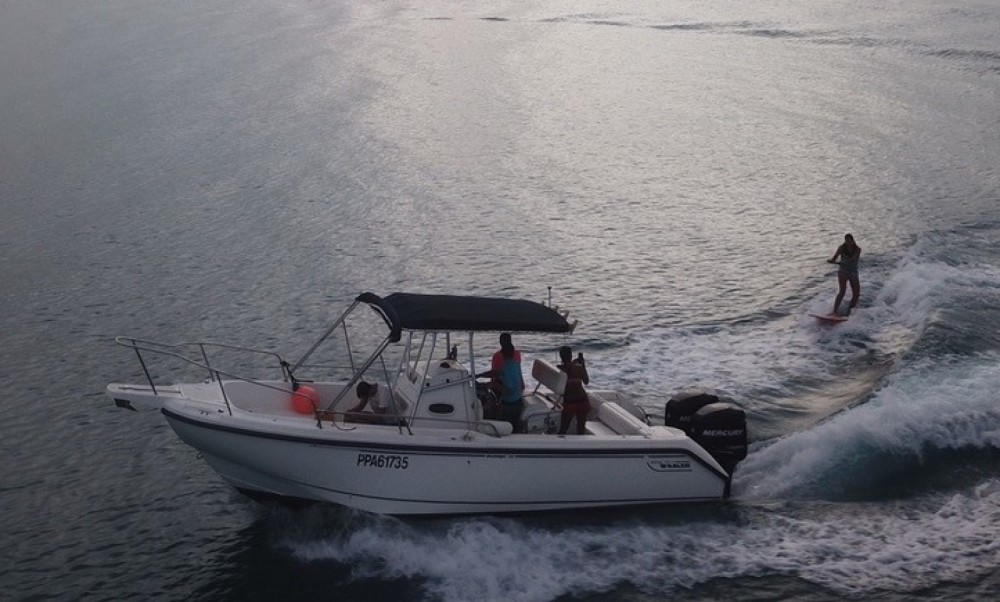 Hire Motor boat with or without skipper Boston Whaler Grand-Bourg