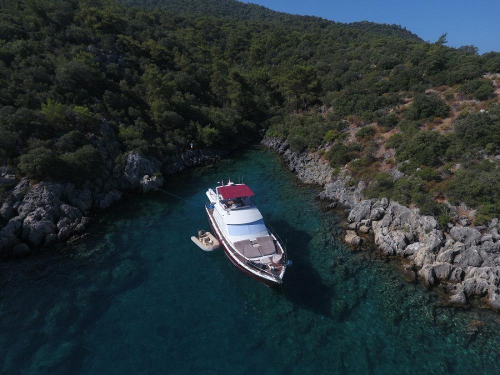 Rental Yacht in Aegean Region - special 60