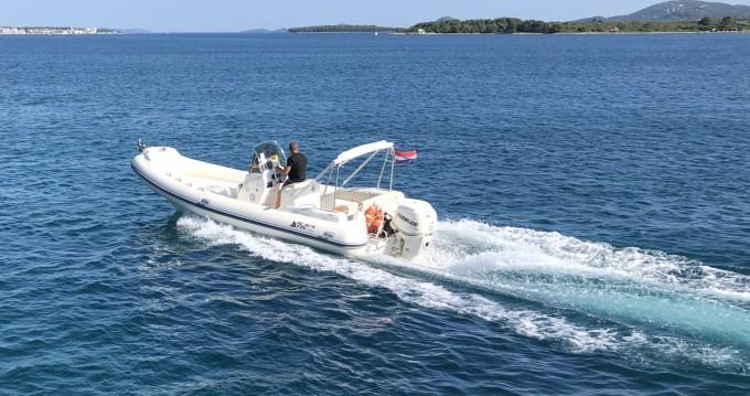 Boat rental Nuova Jolly Blackfin 25 Elegance in Biograd na Moru on Samboat