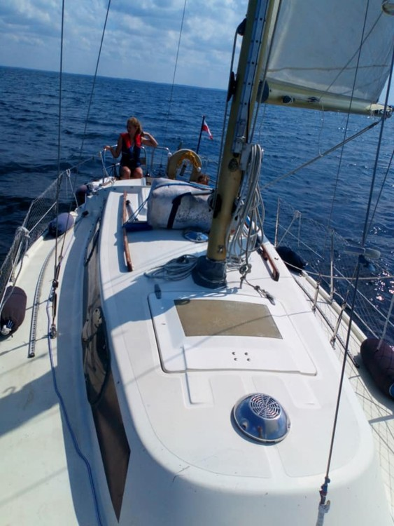 Rental yacht Władysławowo - Winga Ohlson 29 on SamBoat