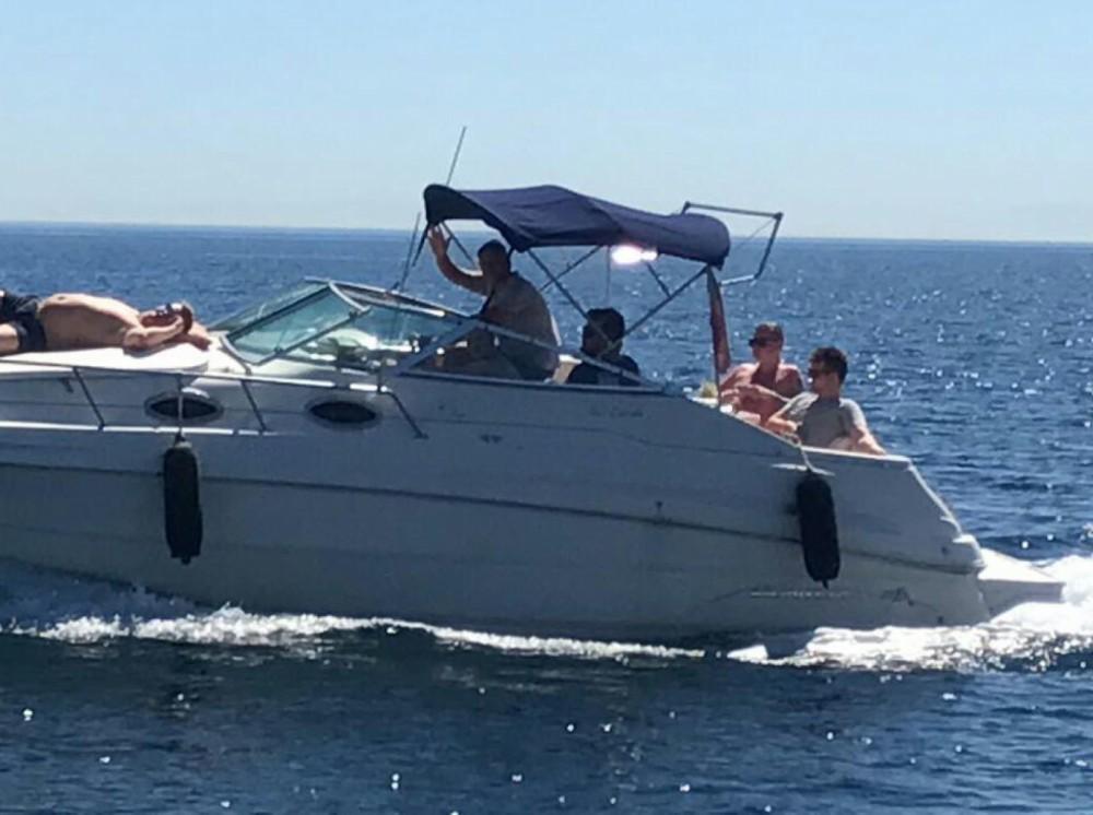 Rent a Monterey 262 CRUISER Marbella