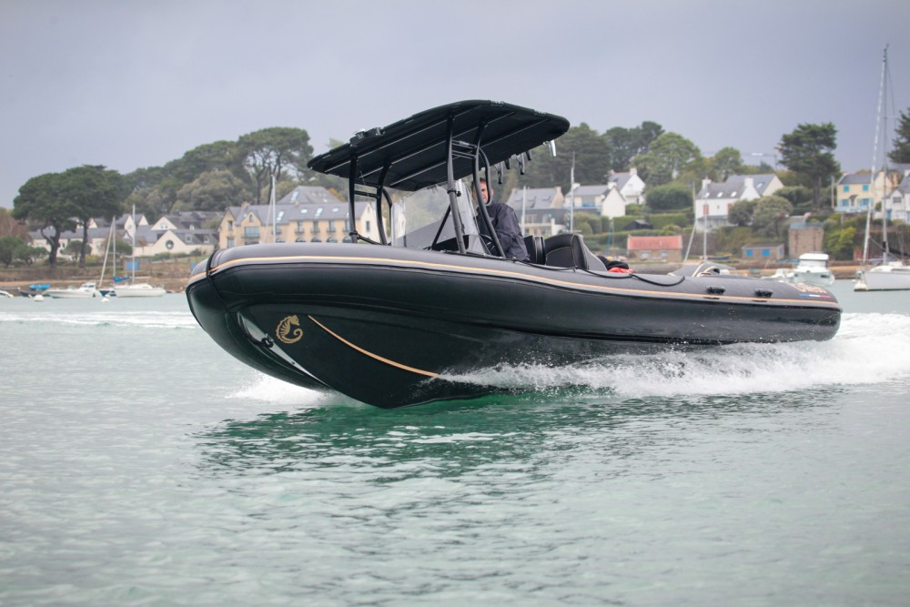 Hire Motorboat with or without skipper Rib Arzon
