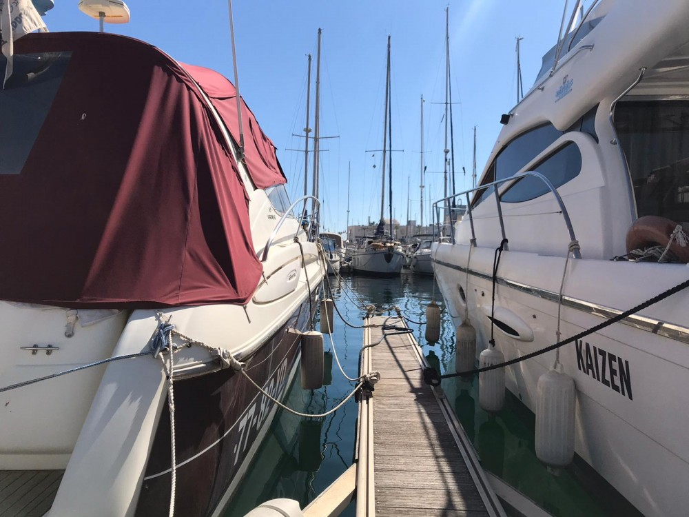 Boat rental Doqueve Majestic 420 in Alicante on Samboat