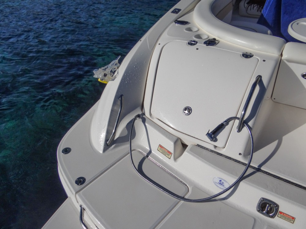 Sea Ray Sea Ray 290 SLX between personal and professional Alicante