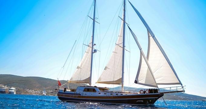 Boat rental custom built gulet Gulet in Bodrum on Samboat