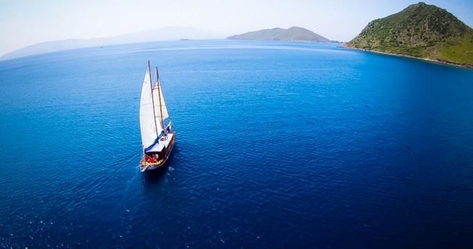 Boat rental  Gulet Kaptan Yarkin  in Bodrum on Samboat