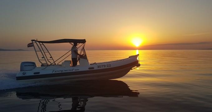 Rental yacht Sukošan - Cantieri TEMPEST 600 + Honda 135 on SamBoat