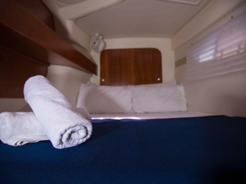 Boat rental Leopard Leopard 384 in Nikiti on Samboat