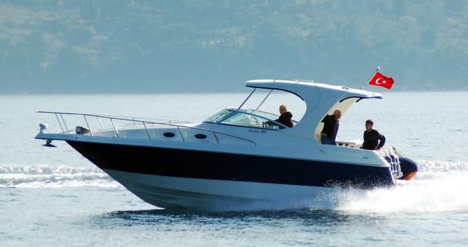 Boat rental  San Boat 980 Cuddy in  on Samboat