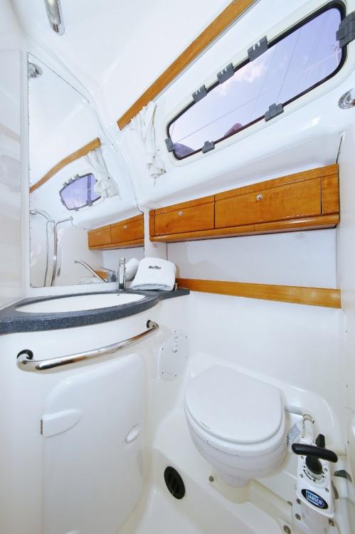 Boat rental  cheap Cruiser 39