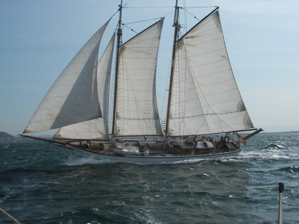 Boat rental Murray Peterson Diseño único in  on Samboat