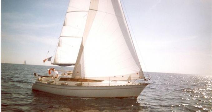 Rental yacht Saint-Laurent-du-Var - Jeanneau Sun Dream 28 on SamBoat