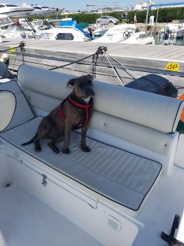Rental Motorboat in Saint-Laurent-du-Var - Marinello Eden 20