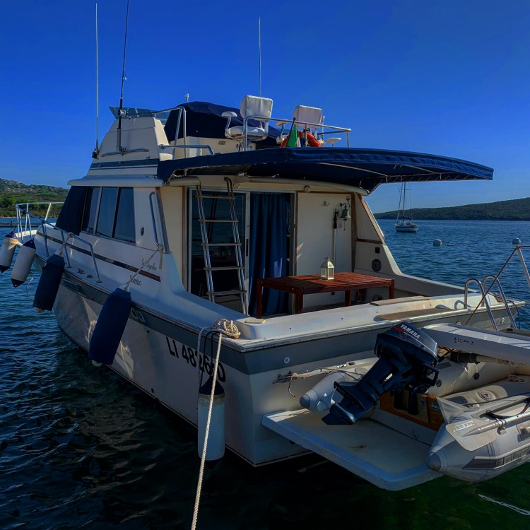 Silverton-Yacht 37 convertible  between personal and professional Palau