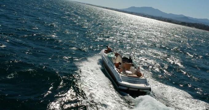 Boat rental Sea Ray Sea Ray 280 in Marbella on Samboat